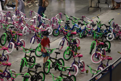 Child surveying the bike options at Bikes for Kids 2017